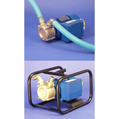Fluid Transfer Pump - 1in. c/w Hose